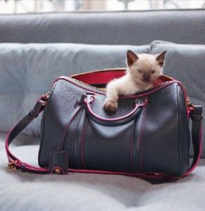 SC bag Sofia Coppola louis Vuitton