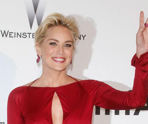 Sharon Stone peinada por Franck Provost para la gala amfAR
