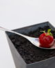 Tapa Tomate Elettra realizada por chefs Torres