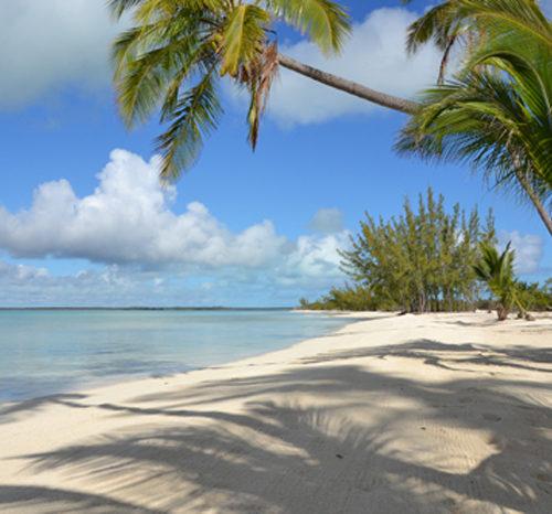 Las Bahamas Fitur 2017 Viajes