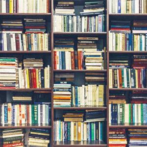 libreros independientes envian libros a casa